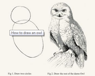 The Art of the Owl